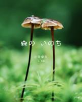 「森のいのち」表紙