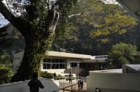 大杉谷自然学校は、廃校になった旧・大杉小学校。大ケヤキがいまも子どもたちを見守っています。